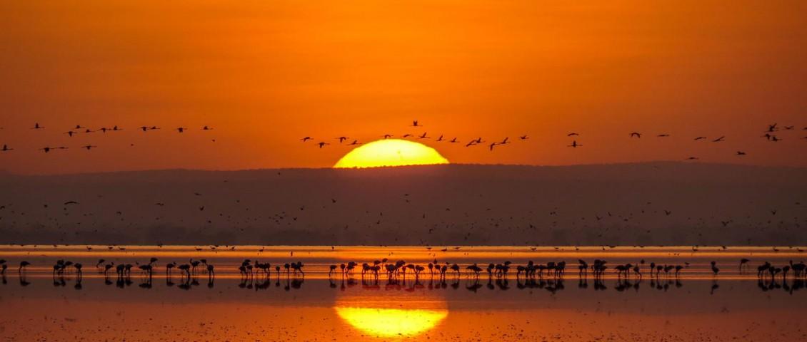 cedarberg-lemala-manyara-tented-camp-sunsets-at-lake-manyara-14